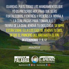 #ViveLaPalabra - Desde el principio del año hasta el fin...