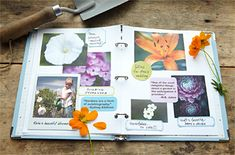 Making a Gardening Journal  Organize what you've learned from your gardening experiences, and store little reminders of your successes