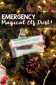 Emergency Magical Elf Dust - A Grande Life Christmas Elf, Christmas Wreaths, Christmas Crafts, Xmas, Christmas Ornaments, Christmas Ideas, How To Make Magic, Crafts To Make And Sell, The Elf