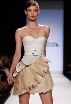 Google Image Result for http://images1.fanpop.com/images/photos/2400000/Leanne-s-Collection-project-runway-2454021-361-526.jpg