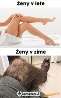 VTÍPKY O ŽENÁCH | Mimibazar.cz Words Can Hurt, Warrior Cats, Funny Pins, Cringe, Funny Jokes, Haha, Comedy, Funny Pictures, Memes