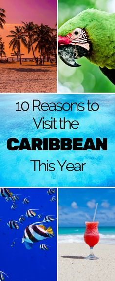 best vacations in the Caribbean; top reasons to visit the Caribbean; best places to vacation in the Caribbean