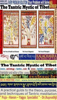 deeksha guru yogi dr rupnathji sowa rigpa ma-gyud ma-gyu i ching sa che Tantra Gyuto bon specialist tibet gyud kalachakra tibetan jyotish horoscope