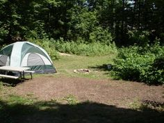 Michigan Tent Sites › Wild Cherry Resort › RV Resort and Campground › Suttons Bay, Michigan Yurt Camping, Suttons Bay, Family Travel, Family Trips, Yellow Sea, Traverse City, Outdoor Gear, Rv, Michigan