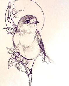 Discover recipes, home ideas, style inspiration and other ideas to try. Art Drawings Sketches Simple, Bird Drawings, Pencil Art Drawings, Easy Drawings, Animal Drawings, Tattoo Drawings, Tattoo Sketches, Tattoos, Tatoo Bird