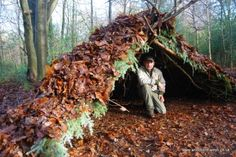 Wilderness+Survival+Skills+Illustartions | survival skills course own build shelter in the wilderness survival