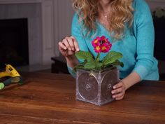 Upcycled CD Case Flower Pot >> http://blog.diynetwork.com/maderemade/how-to/upcycling-cd-cases-jewel-case-flowerpot/?soc=pinterest
