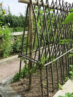 Raised Vegetable Garden Beds Can Be A Great Gardening Option – Handy Garden Wizard Potager Garden, Veg Garden, Vegetable Garden Design, Garden Trellis, Edible Garden, Garden Cottage, Garden Beds, Garden Landscaping, Vegetable Gardening