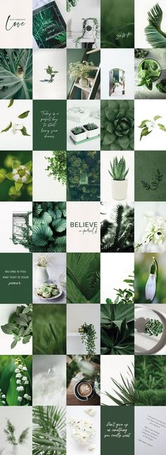 Spice up your room or dorm with this Green Aesthetic Room Decor - Botanical Plants Dorm Decor