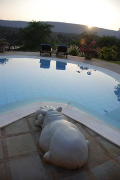 """The gorgeous pool at Saa Na Na House """"Trust House"""" in Kenya.  The hippo sculpture overlooks the pool and the pool overlooks the river with live hippos!"""