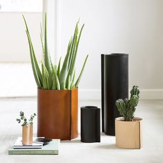<b>Something special that lasts for life.</b>This unique series of leather vases is created by Strups