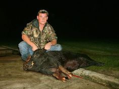 Alligator hunting Florida hog hunting and osceola turkey hunting all available at this hunting ranch near Lake Okeechobee. Outfitters ready to serve you with various hunting packages.