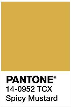 Pantone 14-0952 - Google Search
