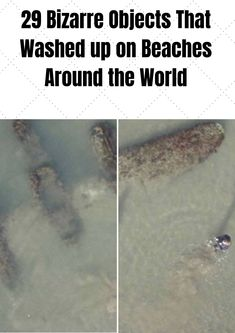 The sea is full of mystery. Seriously, we only know a fraction of what goes on in there. Also, as a species, humans are great at littering. Just top notch at throwing garbage where it doesn't belong. All In One, Around The Worlds, Humor, 6 Packs, Celebrities, Amazing, Beaches, Mystery, Wanderlust