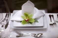 Creative wedding table setting ideas. Green cymbidium orchid can be a feature on a plate.
