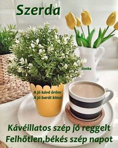 Planter Pots, Good Morning, Good Day, Bonjour, Bom Dia, Buongiorno