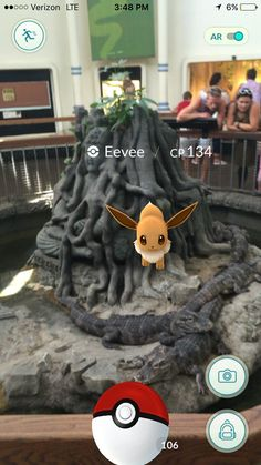 Eevee apparently don't give a shit
