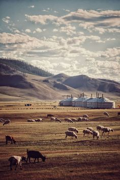 Inner Mongolia Pastoral Region Landscape by / Sts Mongolia, Travel Around Europe, Asia Travel, Wanderlust Travel, Voyage Europe, Photos Voyages, Amazing Adventures, Travel Goals, Romania