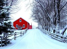 Habitually Chic® » Red and White Christmas Winter Schnee, Country Barns, Country Life, Cross Country, Country Living, Country Roads, Winter Love, Winter Snow, Winter Walk
