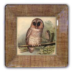 Owl decoupage plates #owl #plates #decoupage
