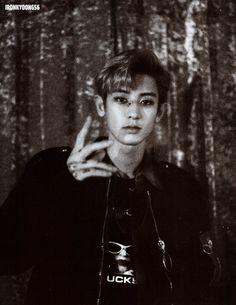 """Chanyeol - Exo """"álbum repackage Lotto"""" (Photobook)"""