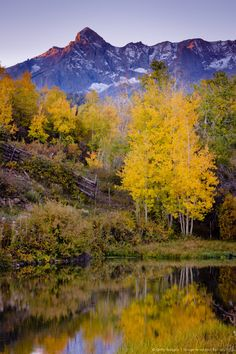 Ridgeway in Colorado, America Beautiful World, Beautiful Places, Autumn Scenes, Beautiful Landscapes, The Great Outdoors, Wonders Of The World, Nature Photography, Scenery, Amazing Nature