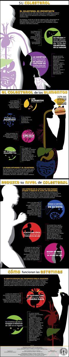 Infografía sobre el colesterol, cómo reducirlo y sobre cómo funcionan las estatinas #salud #comasano