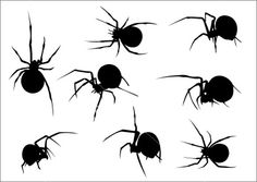 Spider silhouettes... these could be printed on a transparency & put on mirrors curio cabinets & more.