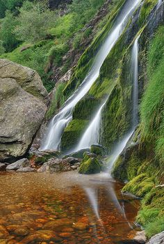 """Waterfall - Ireland  / """"I think that travel comes from some deep urge to see the world, like the urge that brings up a worm in an Irish bog to see the moon when it is full."""" – Lord Dunsany"""