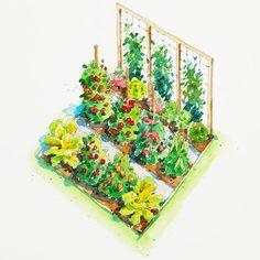 All-American Vegetable Garden Plan: Cucumber, Lettuce, Radish, Snap pea, Sweet pepper, Swiss chard, Tomato