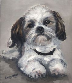 Shih Tzu Dog Original Oil Painting inches Oil on board Simple Oil Painting, Shih Tzu Puppy, Shih Tzus, Animal Sketches, Dog Portraits, Animal Paintings, Acrylic Paintings, Little Dogs, Dog Art