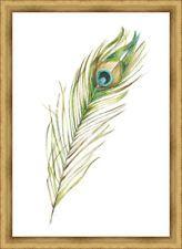 Ashton Wall Décor LLC Trends Peacock Feather II Framed Painting Print