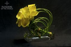 Artfully arranged calla lilies and green willow designed by Flowers of the World.