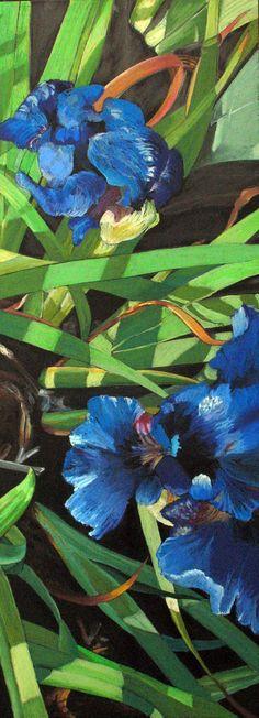 Irises; Maura Matula Williams, 2012