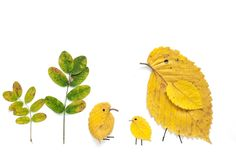 leaf art!  via kokokoKIDS: Fall Leaves Craft Ideas