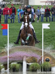 cool cross country jumps - Google Search
