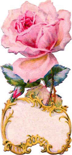 Victorian Rose Frame / Journal Card ~ http://2.bp.blogspot.com/-BU2J9XRbKwU/Twfuq8-qSnI/AAAAAAAAMqQ/RRhHeupFg9U/s1600/pink+rose+antique++Image+GraphicsFairy006c.png