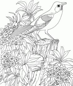 coloring pages for teenagers difficult mermaid printable coloring pages for teenagers difficult mermaid free coloring pages for teenagers difficult