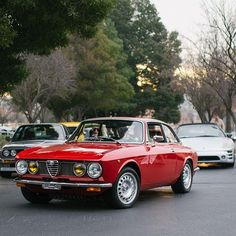 Beautiful Alfa Romeo GT