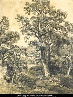 A Wooded Landscape, East Bergholt - John Constable - www.john-constable.org