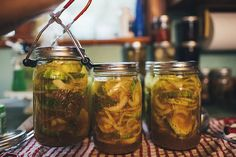 Bread And Butter Pickles : Homesteading Recipe | Tangy irresistible flavor that you don't want to miss out on.