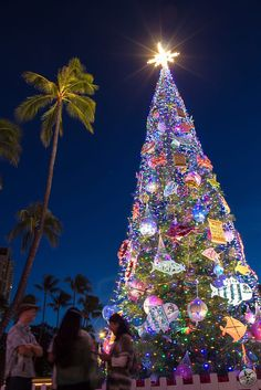 Honolulu Hale Christmas Tree by Rey Calamaan on 500px