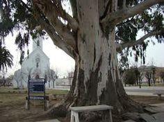 iglesia carhue -