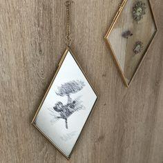 DIY herbier cadre ou gravure miroir sur kraft & carat