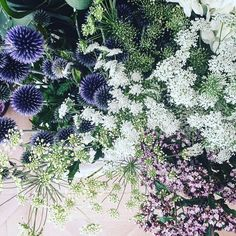 flower fabulousness #Regram via @sophieconran