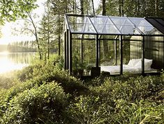 A glass bedroom in the forest
