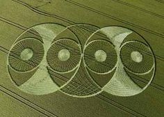 Crop Circles - Hillside Farm, nr Lockeridge, Wiltshire, England. Reported July 20, 2008.