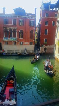 Gelato, Pasta, Pizza, Gorgeous Men and some more Gelato. Acountry with so many amazing places and such a rich history, where Gelato is the staple food of tourists and even some of the locals.…
