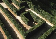 Schonbrunn Imperial Palace Maze