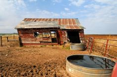 Leaning barn in Texas Panhandle,reckon ya can tell which way the wind blows from Lubbock Texas, Texas Usa, Custom Pools, Texas Homes, Old Barns, Windmills, Urban Decay, Travel Ideas, Abandoned